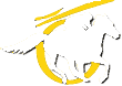 Narrogin Racing logo
